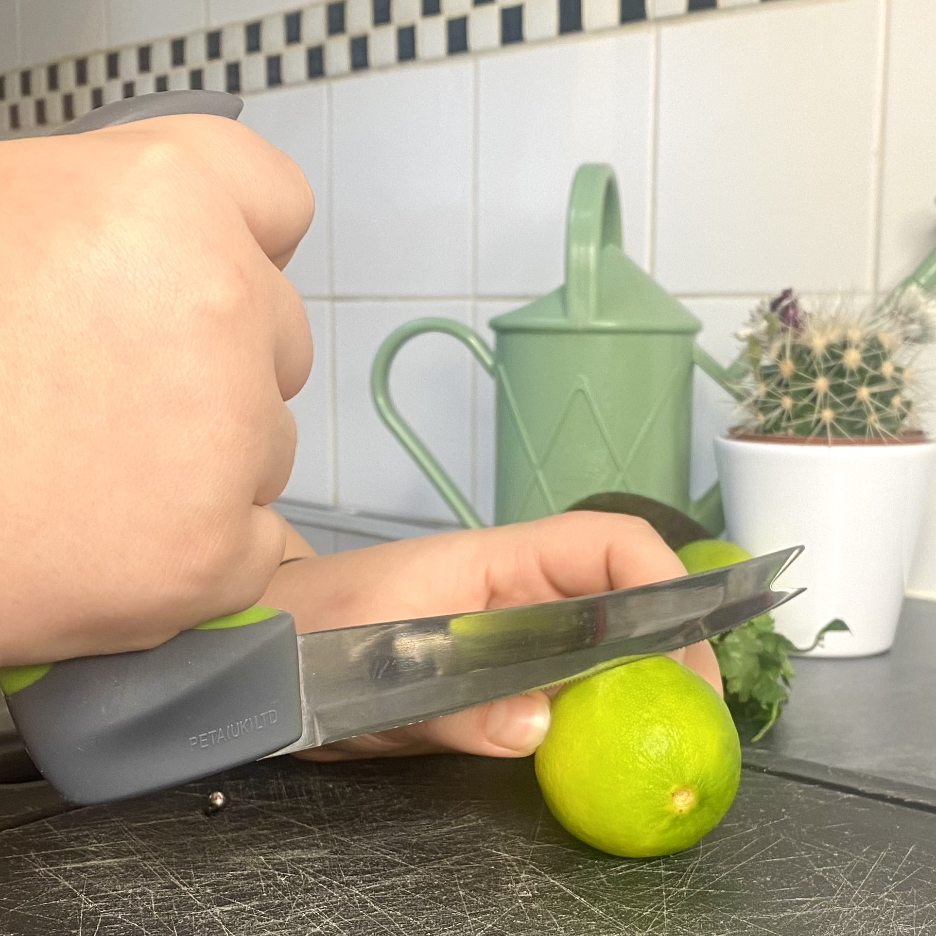 Easi Grip Knife – Kitchen Aid